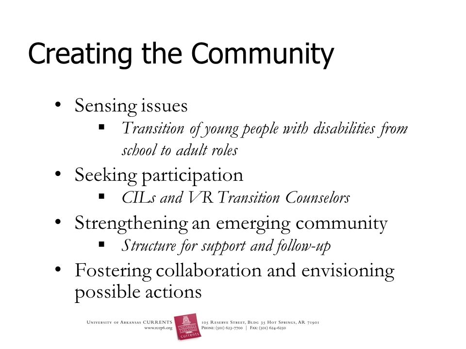 Creating the Community Sensing issues Transition of young people with disabilities from school to adult roles Seeking participation CILs and VR Transition Counselors Strengthening an emerging community Structure for support and follow-up Fostering collaboration and envisioning possible actions