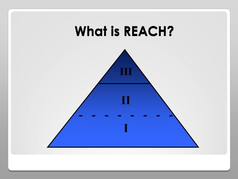 What is REACH I II III