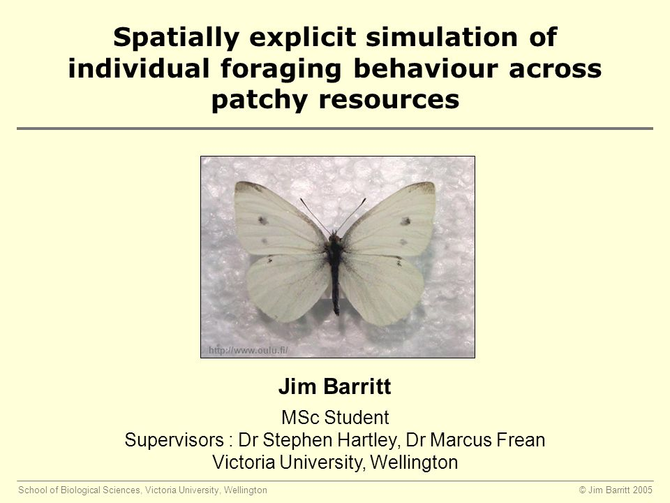 © Jim Barritt 2005School of Biological Sciences, Victoria University, Wellington MSc Student Supervisors : Dr Stephen Hartley, Dr Marcus Frean Victoria University, Wellington Jim Barritt Spatially explicit simulation of individual foraging behaviour across patchy resources