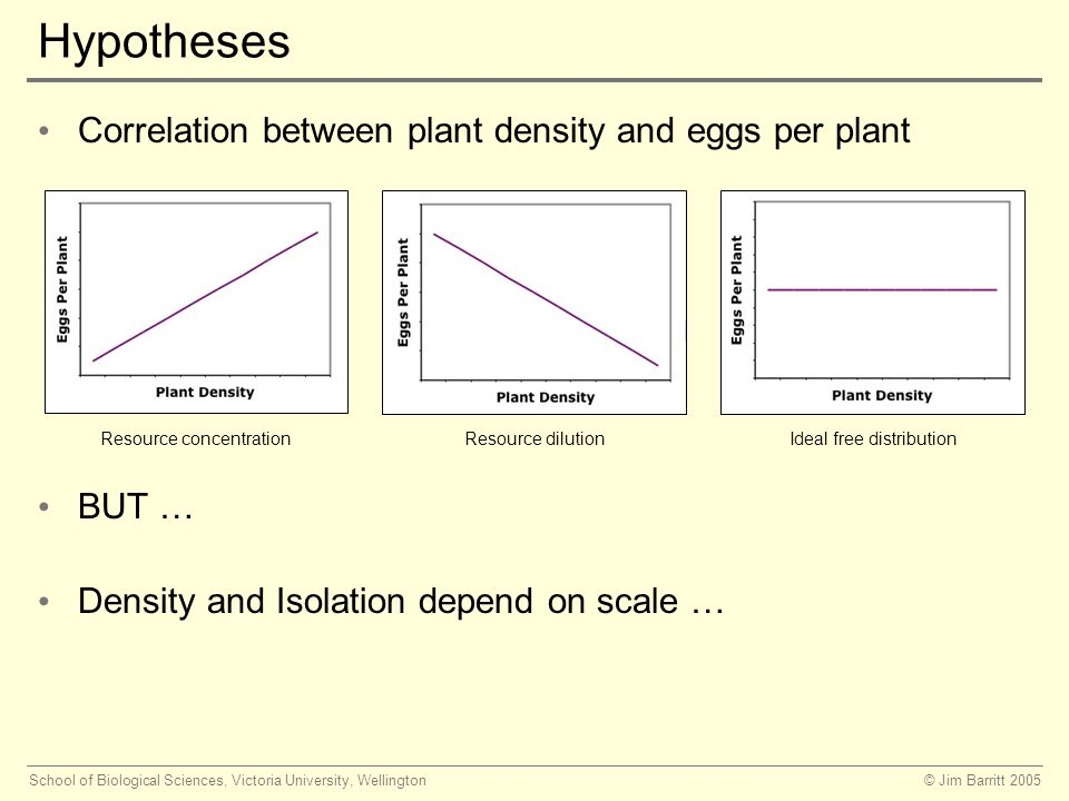© Jim Barritt 2005School of Biological Sciences, Victoria University, Wellington Hypotheses Correlation between plant density and eggs per plant BUT … Density and Isolation depend on scale … Resource concentration Resource dilutionIdeal free distribution
