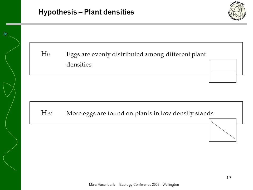 13 Hypothesis – Plant densities H 0 Eggs are evenly distributed among different plant densities H A More eggs are found on plants in low density stands Marc Hasenbank Ecology Conference 2006 - Wellington