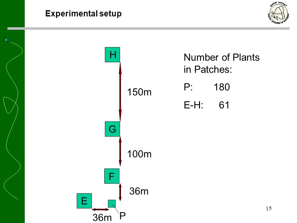 15 Experimental setup 100m 150m 36m P E F G H Number of Plants in Patches: P:180 E-H: 61