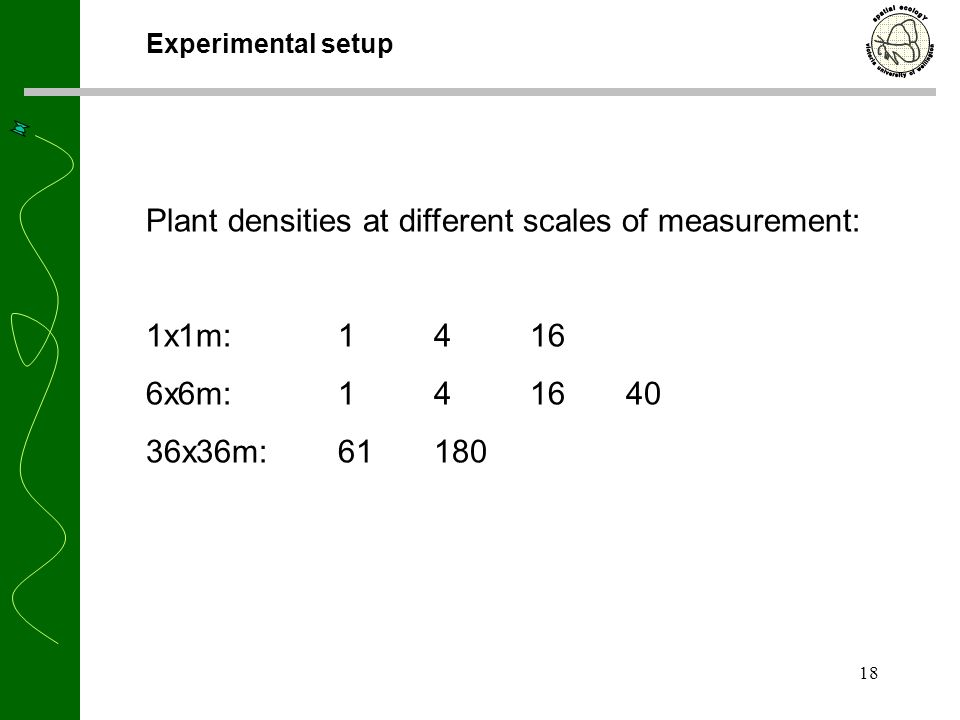18 Experimental setup Plant densities at different scales of measurement: 1x1m: 1416 6x6m: 141640 36x36m:61180