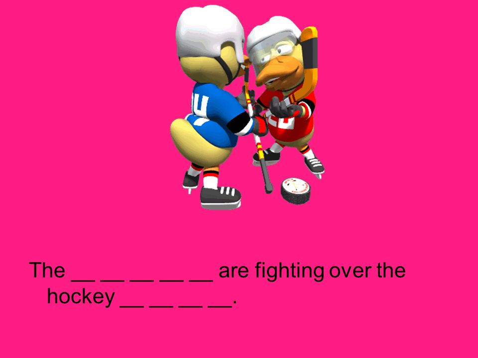 The __ __ __ __ __ are fighting over the hockey __ __ __ __.