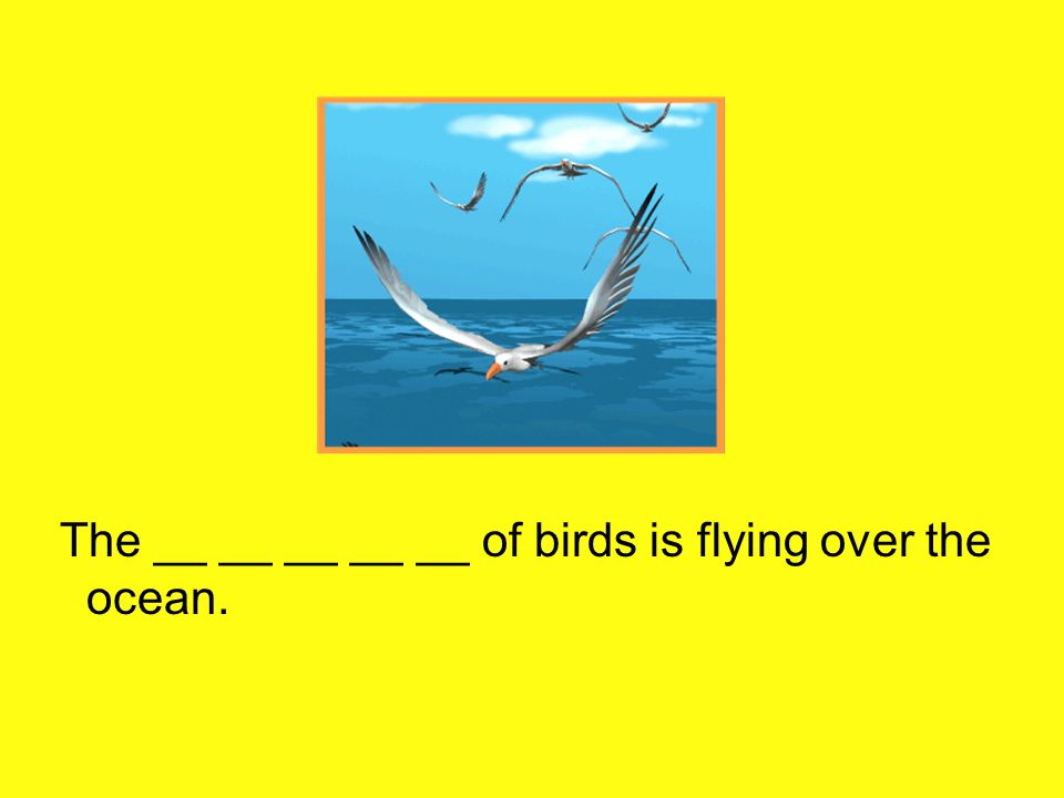 The __ __ __ __ __ of birds is flying over the ocean.