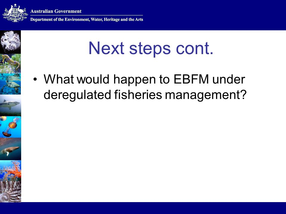 Next steps cont. What would happen to EBFM under deregulated fisheries management