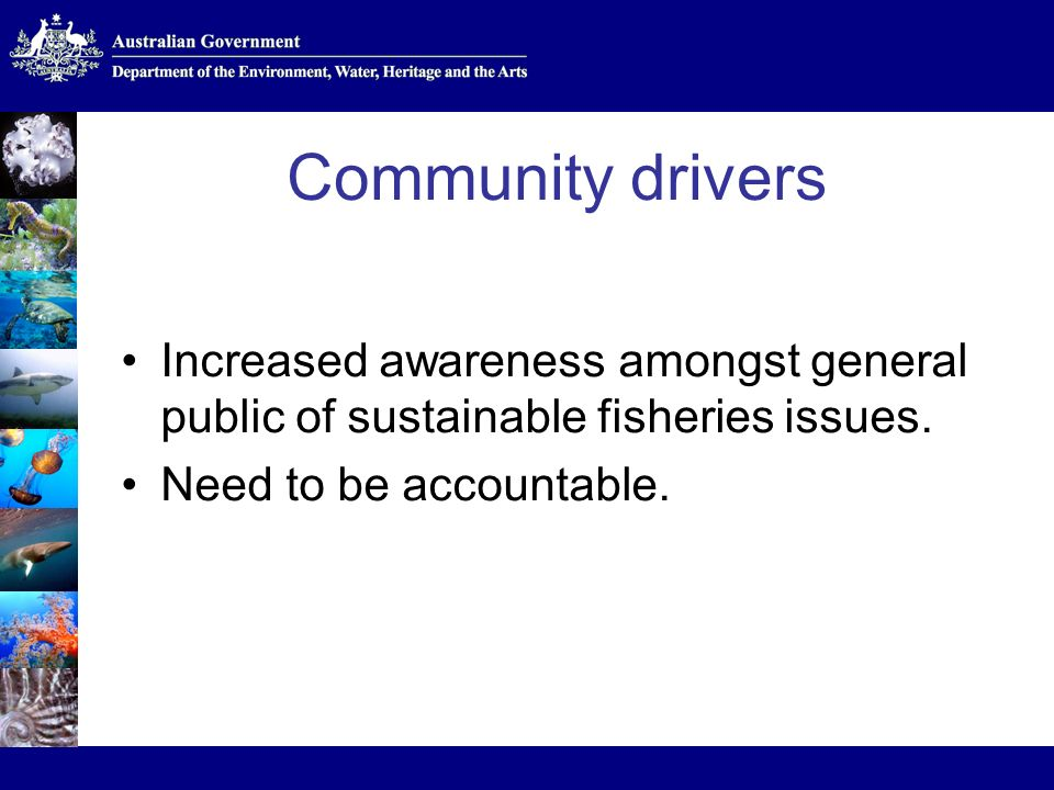 Community drivers Increased awareness amongst general public of sustainable fisheries issues.