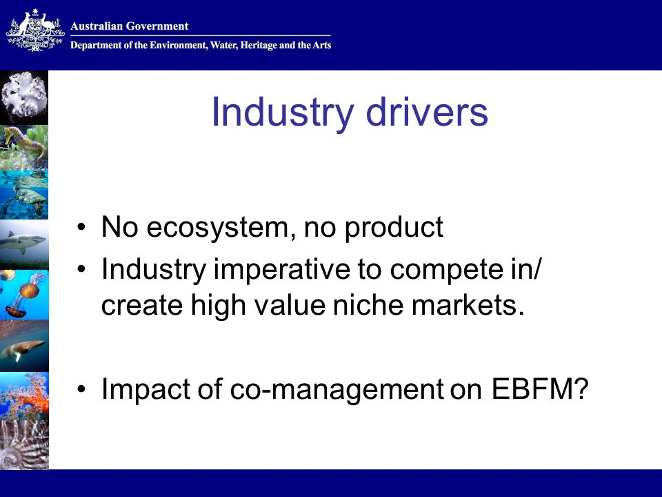 Industry drivers No ecosystem, no product Industry imperative to compete in/ create high value niche markets.