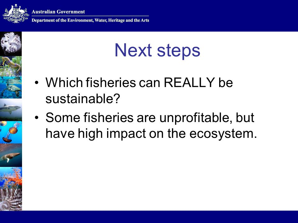 Next steps Which fisheries can REALLY be sustainable.