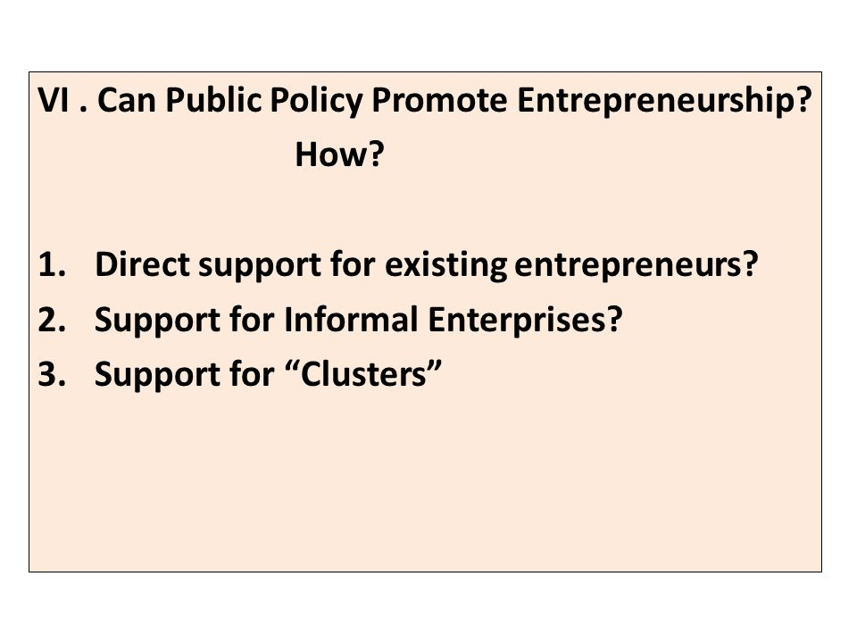 VI. Can Public Policy Promote Entrepreneurship. How.