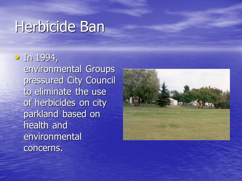 Herbicide Ban In 1994, environmental Groups pressured City Council to eliminate the use of herbicides on city parkland based on health and environmental concerns.