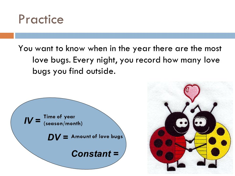 Practice You want to know when in the year there are the most love bugs.