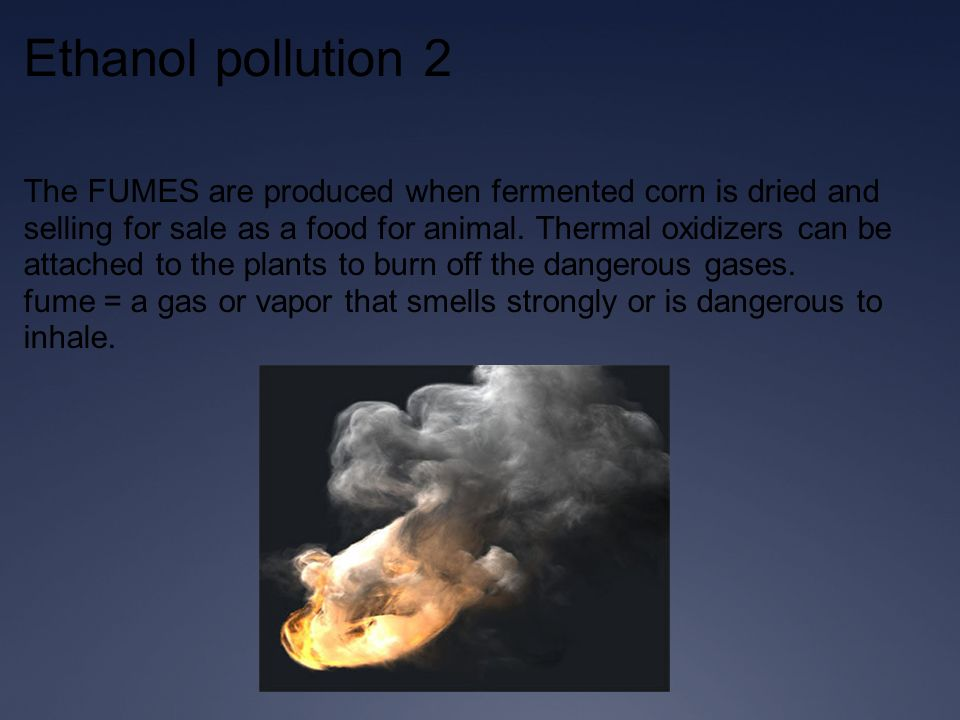 Ethanol pollution 2 The FUMES are produced when fermented corn is dried and selling for sale as a food for animal.