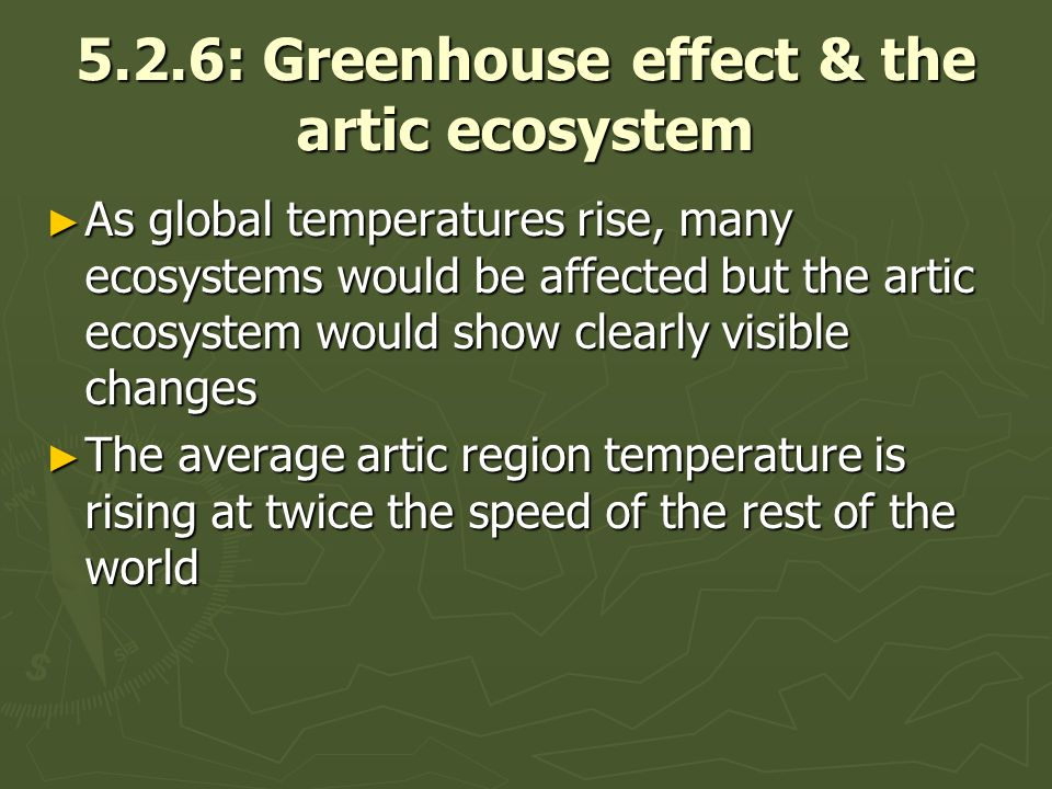 5.2.6: Greenhouse effect & the artic ecosystem As global temperatures rise, many ecosystems would be affected but the artic ecosystem would show clearly visible changes As global temperatures rise, many ecosystems would be affected but the artic ecosystem would show clearly visible changes The average artic region temperature is rising at twice the speed of the rest of the world The average artic region temperature is rising at twice the speed of the rest of the world