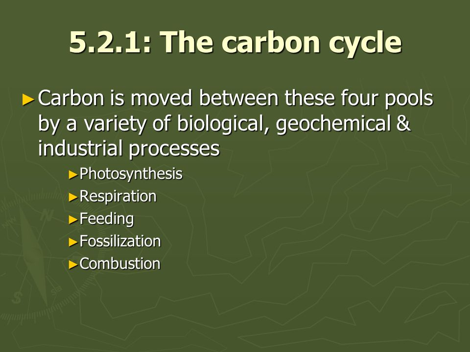 5.2.1: The carbon cycle Carbon is moved between these four pools by a variety of biological, geochemical & industrial processes Carbon is moved between these four pools by a variety of biological, geochemical & industrial processes Photosynthesis Photosynthesis Respiration Respiration Feeding Feeding Fossilization Fossilization Combustion Combustion