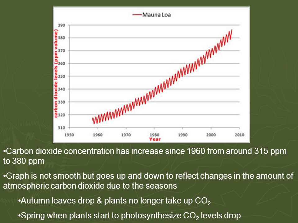 Carbon dioxide concentration has increase since 1960 from around 315 ppm to 380 ppm Graph is not smooth but goes up and down to reflect changes in the amount of atmospheric carbon dioxide due to the seasons Autumn leaves drop & plants no longer take up CO 2 Spring when plants start to photosynthesize CO 2 levels drop