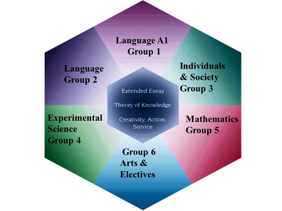 Experimental Science Group 4 Language Group 2 Language A1 Group 1 Individuals & Society Group 3 Mathematics Group 5 Group 6 Arts & Electives