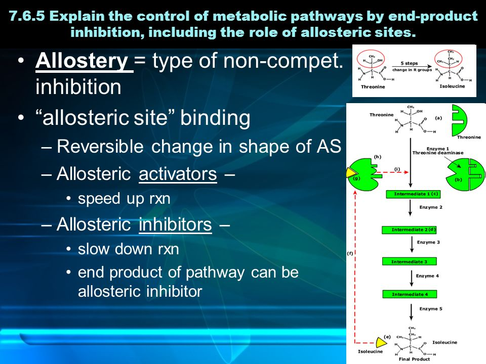 7.6.5 Explain the control of metabolic pathways by end-product inhibition, including the role of allosteric sites.