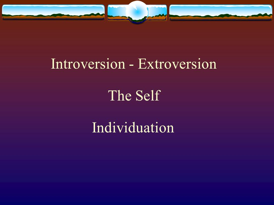Introversion - Extroversion The Self Individuation