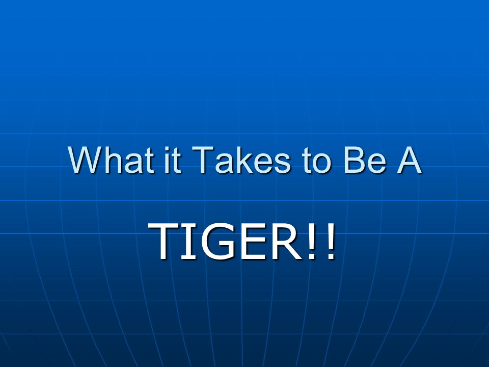 What it Takes to Be A TIGER!!