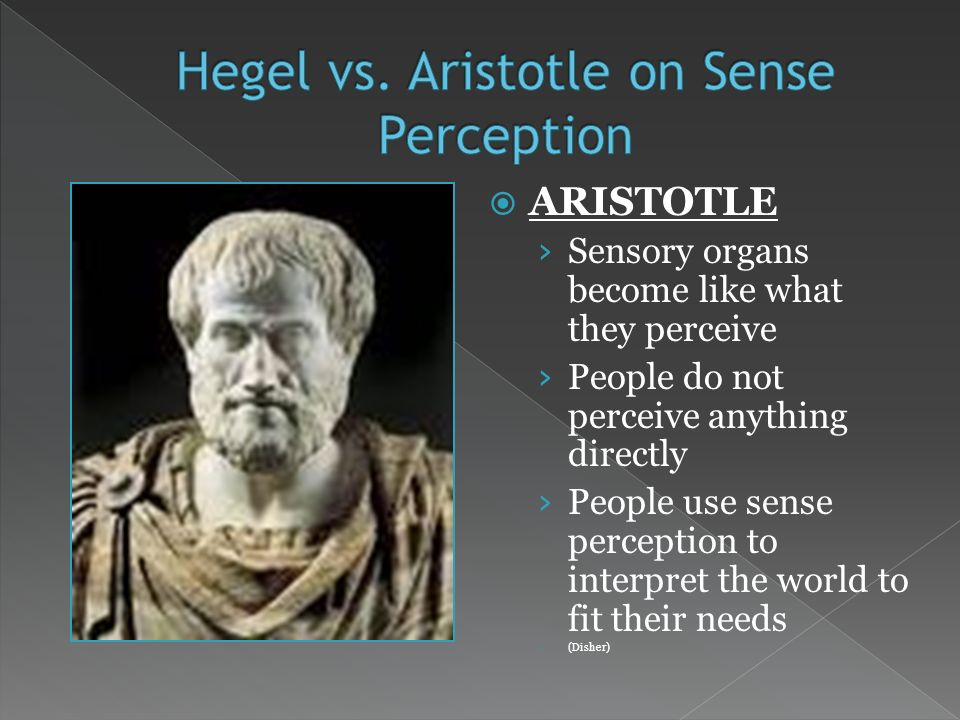ARISTOTLE Sensory organs become like what they perceive People do not perceive anything directly People use sense perception to interpret the world to fit their needs (Disher)