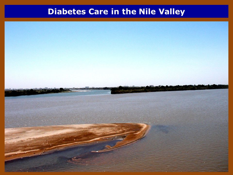 Diabetes Care in the Nile Valley