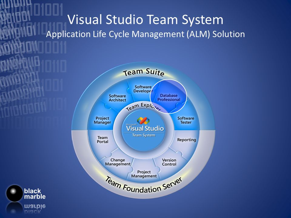 Visual Studio Team System Application Life Cycle Management (ALM) Solution
