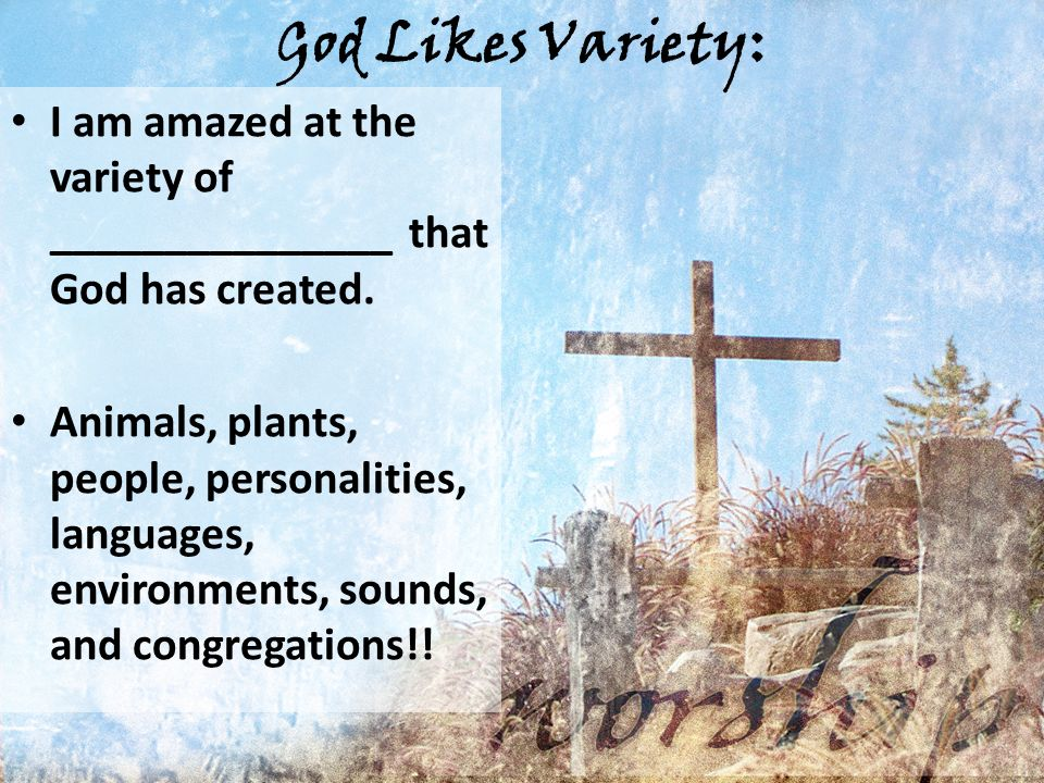 God Likes Variety: I am amazed at the variety of _______________ that God has created.