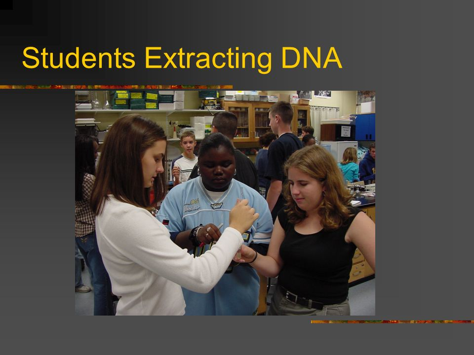 Students Extracting DNA