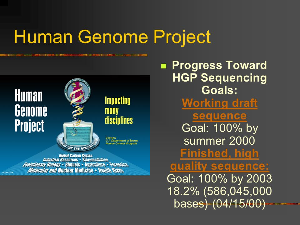 Human Genome Project Progress Toward HGP Sequencing Goals: Working draft sequence Goal: 100% by summer 2000 Finished, high quality sequence: Goal: 100% by 2003 18.2% (586,045,000 bases) (04/15/00) Working draft sequence Finished, high quality sequence: