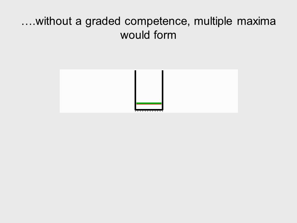 ….without a graded competence, multiple maxima would form