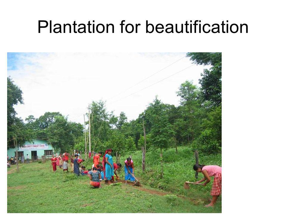 Plantation for beautification