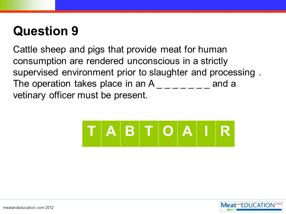 Question 9 Cattle sheep and pigs that provide meat for human consumption are rendered unconscious in a strictly supervised environment prior to slaughter and processing.