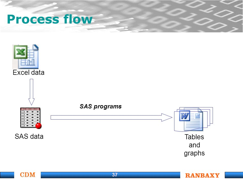 CDM 37 Process flow Excel data SAS data Tables and graphs SAS programs