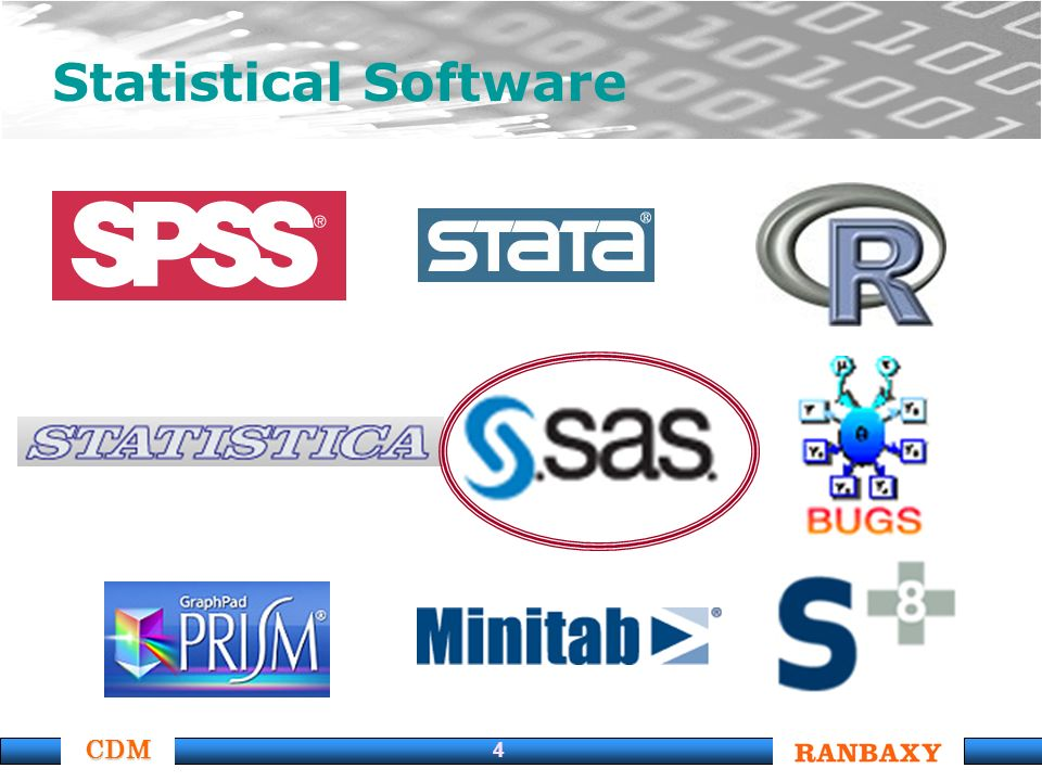 CDM 4 Statistical Software