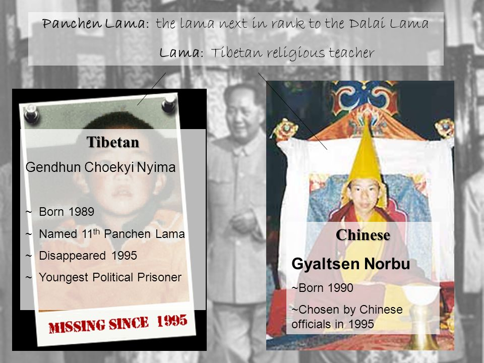 Panchen Lama: the lama next in rank to the Dalai Lama Lama: Tibetan religious teacher Tibetan Gendhun Choekyi Nyima ~ Born 1989 ~ Named 11 th Panchen Lama ~ Disappeared 1995 ~ Youngest Political Prisoner Chinese Gyaltsen Norbu ~Born 1990 ~Chosen by Chinese officials in 1995