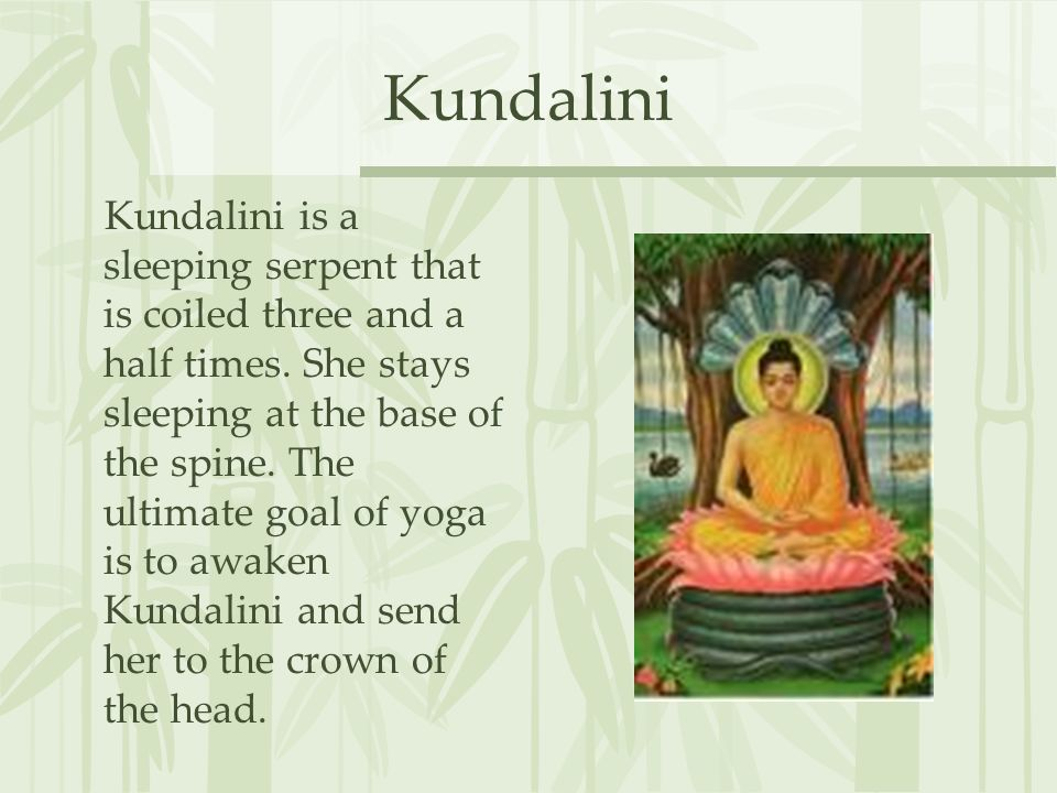 Kundalini Kundalini is a sleeping serpent that is coiled three and a half times.