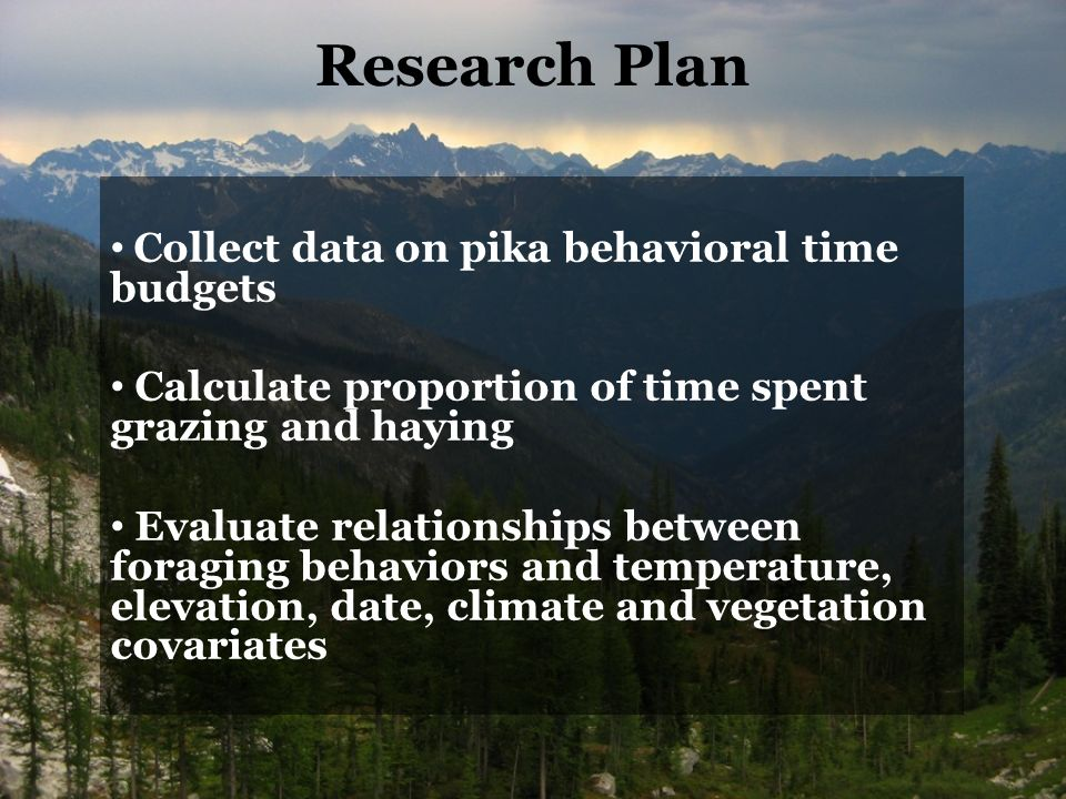 Research Plan Collect data on pika behavioral time budgets Calculate proportion of time spent grazing and haying Evaluate relationships between foraging behaviors and temperature, elevation, date, climate and vegetation covariates