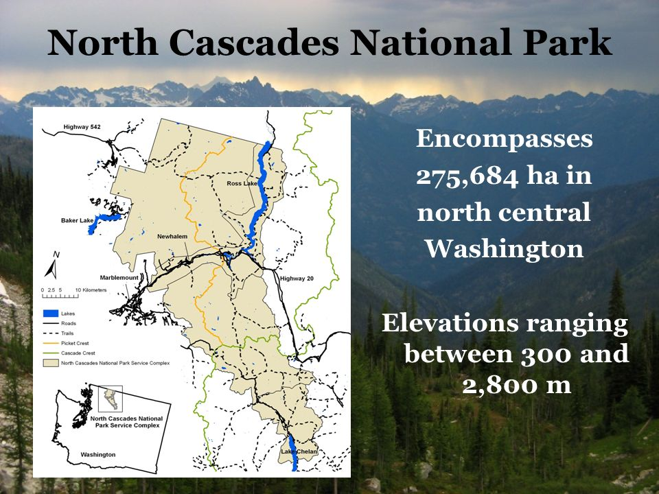 North Cascades National Park Encompasses 275,684 ha in north central Washington Elevations ranging between 300 and 2,800 m
