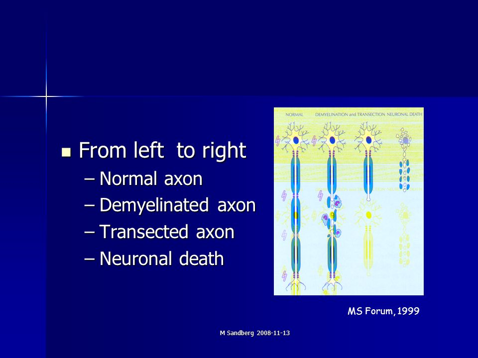 M Sandberg 2008-11-13 From left to right From left to right –Normal axon –Demyelinated axon –Transected axon –Neuronal death MS Forum, 1999