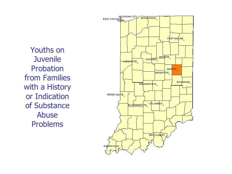 Youths on Juvenile Probation from Families with a History or Indication of Substance Abuse Problems