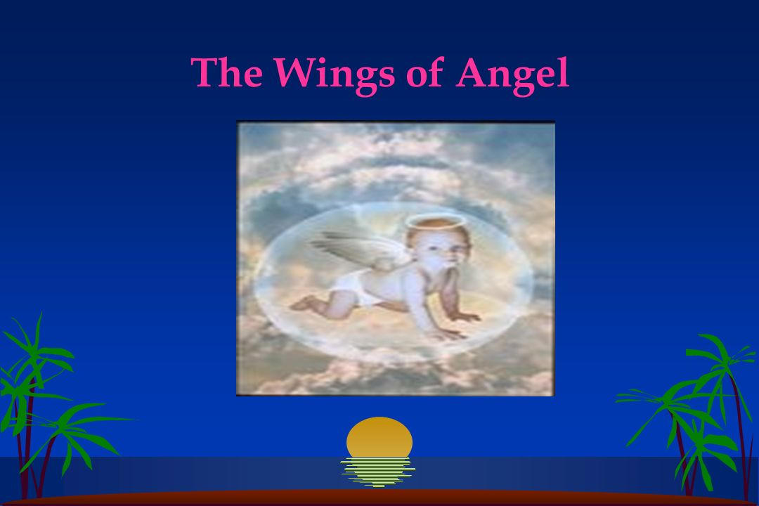 The Wings of Angel