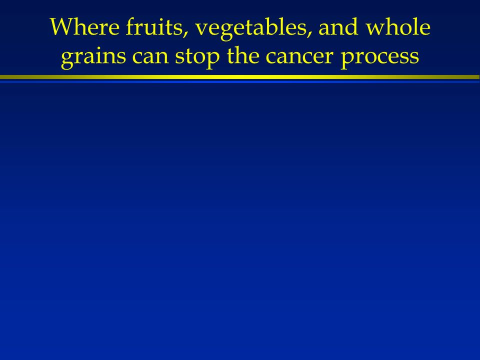 Where fruits, vegetables, and whole grains can stop the cancer process
