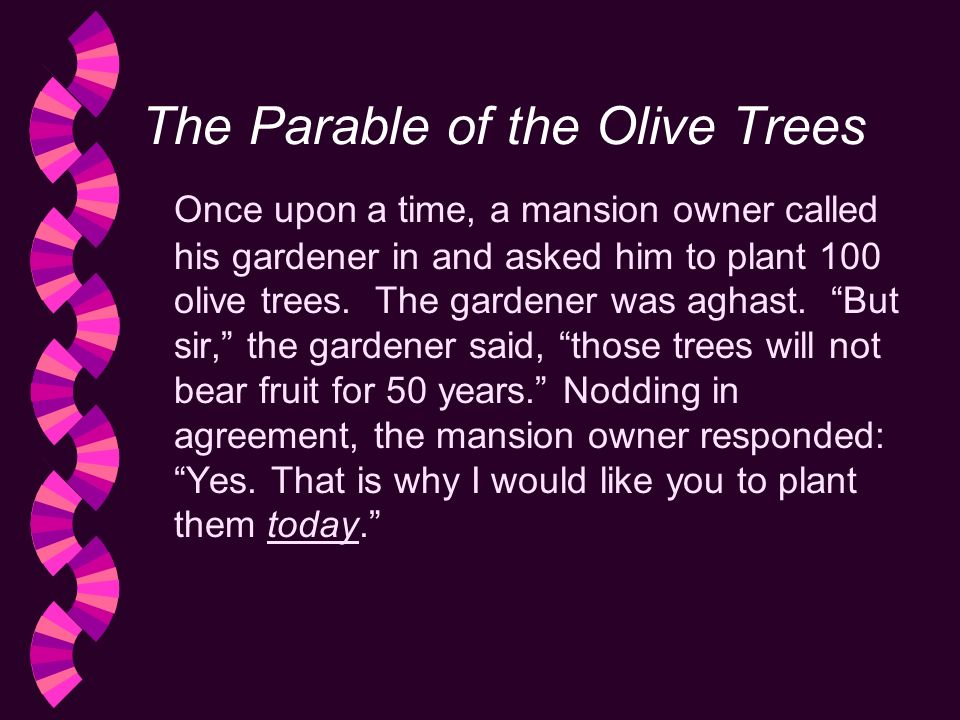 The Parable of the Olive Trees Once upon a time, a mansion owner called his gardener in and asked him to plant 100 olive trees.