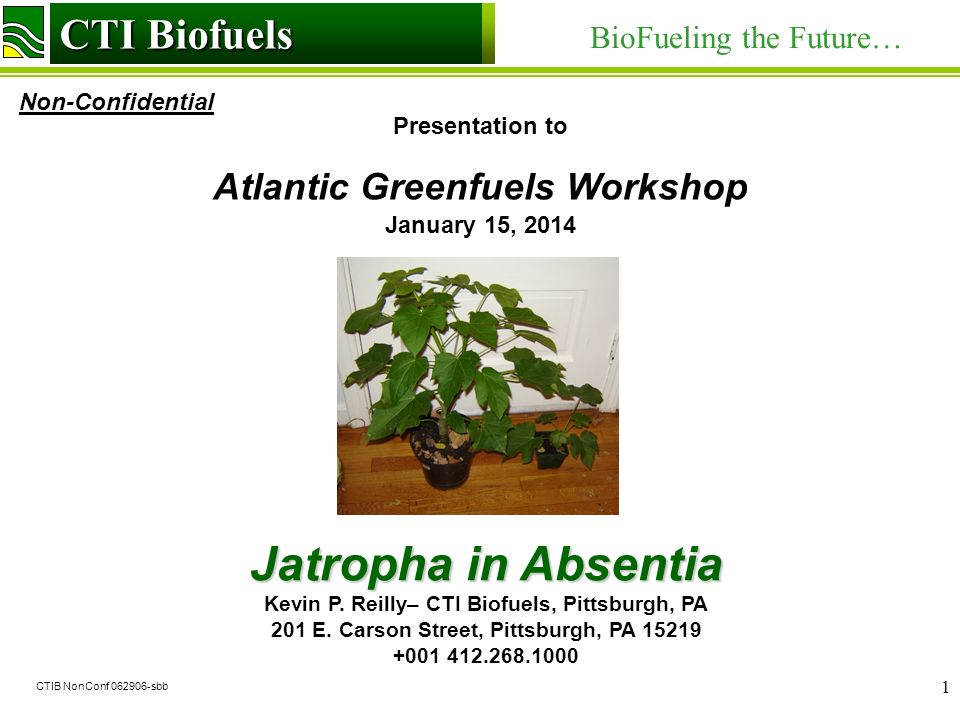 CTI Biofuels BioFueling the Future… Non-Confidential CTI Biofuels CTIB NonConf 062906-sbb 1 Presentation to Atlantic Greenfuels Workshop January 15, 2014 Jatropha in Absentia Kevin P.