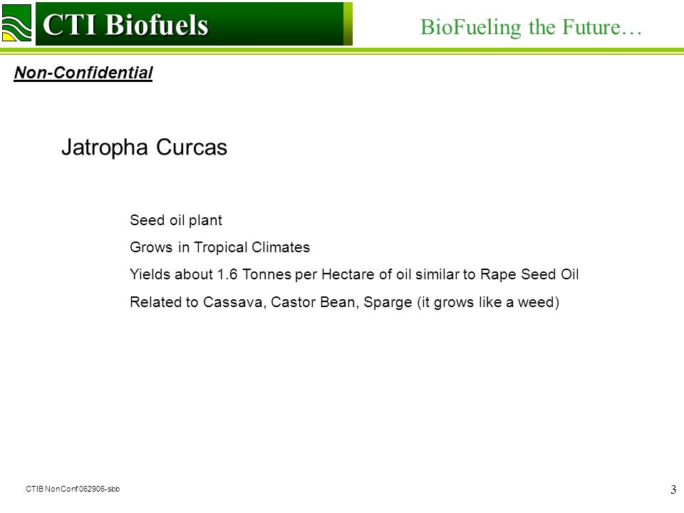 CTI Biofuels BioFueling the Future… Non-Confidential CTI Biofuels CTIB NonConf sbb 3 Jatropha Curcas Seed oil plant Grows in Tropical Climates Yields about 1.6 Tonnes per Hectare of oil similar to Rape Seed Oil Related to Cassava, Castor Bean, Sparge (it grows like a weed)