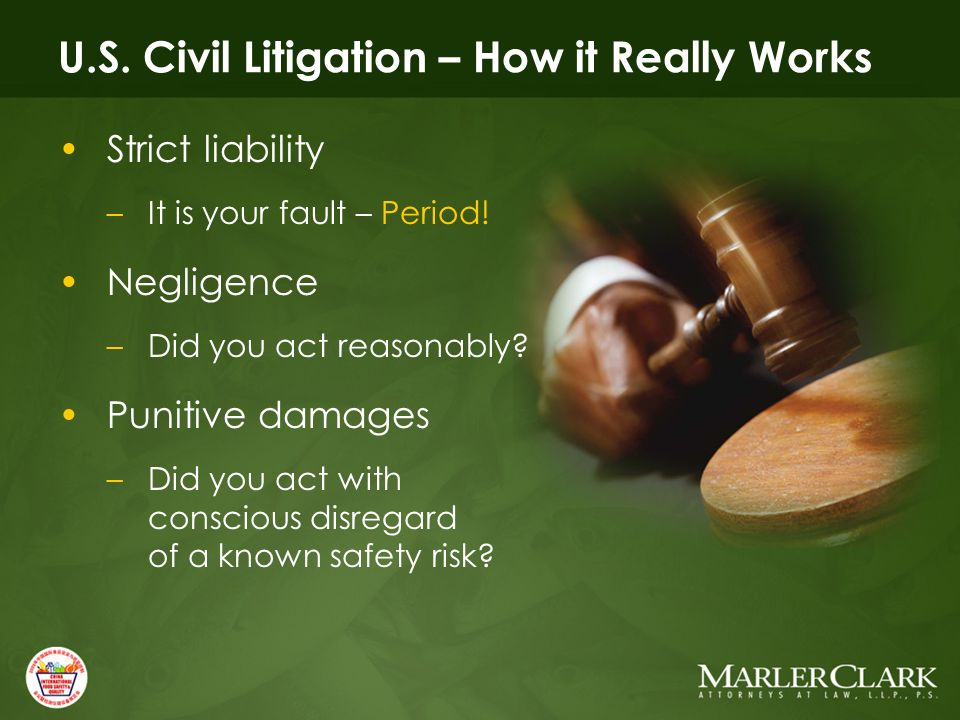 U.S. Civil Litigation – How it Really Works Strict liability –It is your fault – Period.