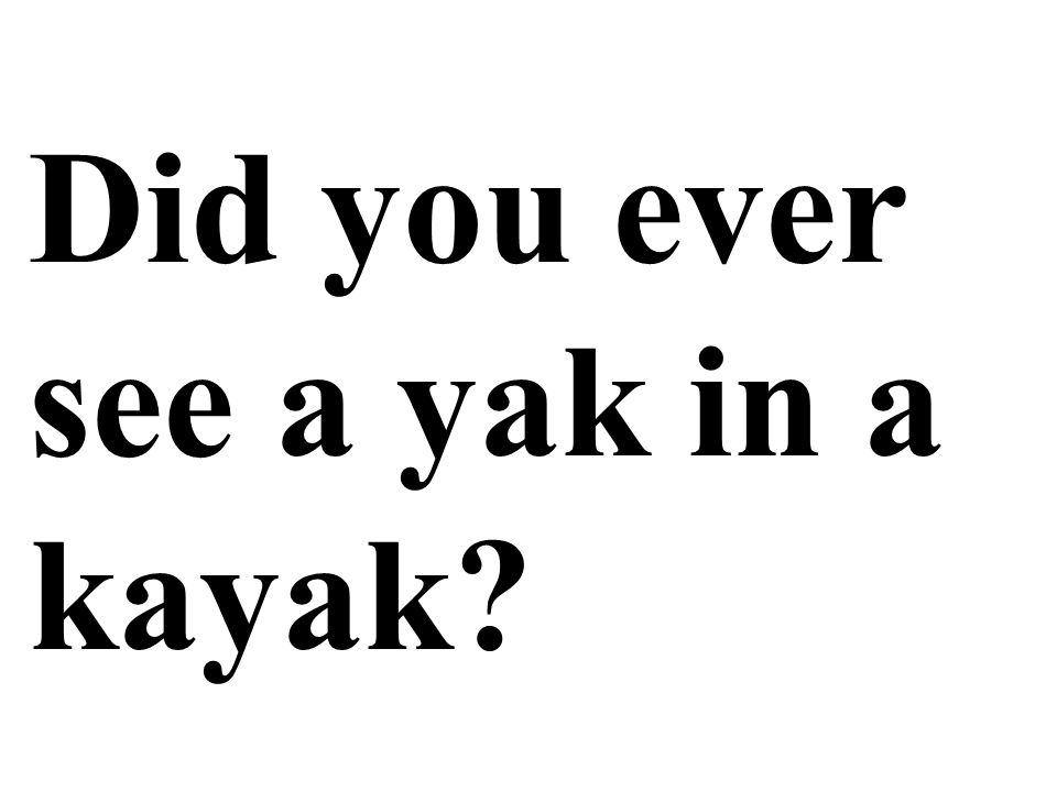 Did you ever see a yak in a kayak