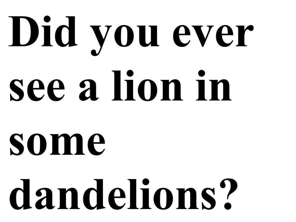 Did you ever see a lion in some dandelions