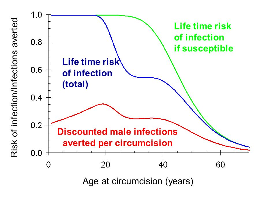 Life time risk of infection if susceptible Life time risk of infection (total) Discounted male infections averted per circumcision Risk of infection/Infections averted Age at circumcision (years)